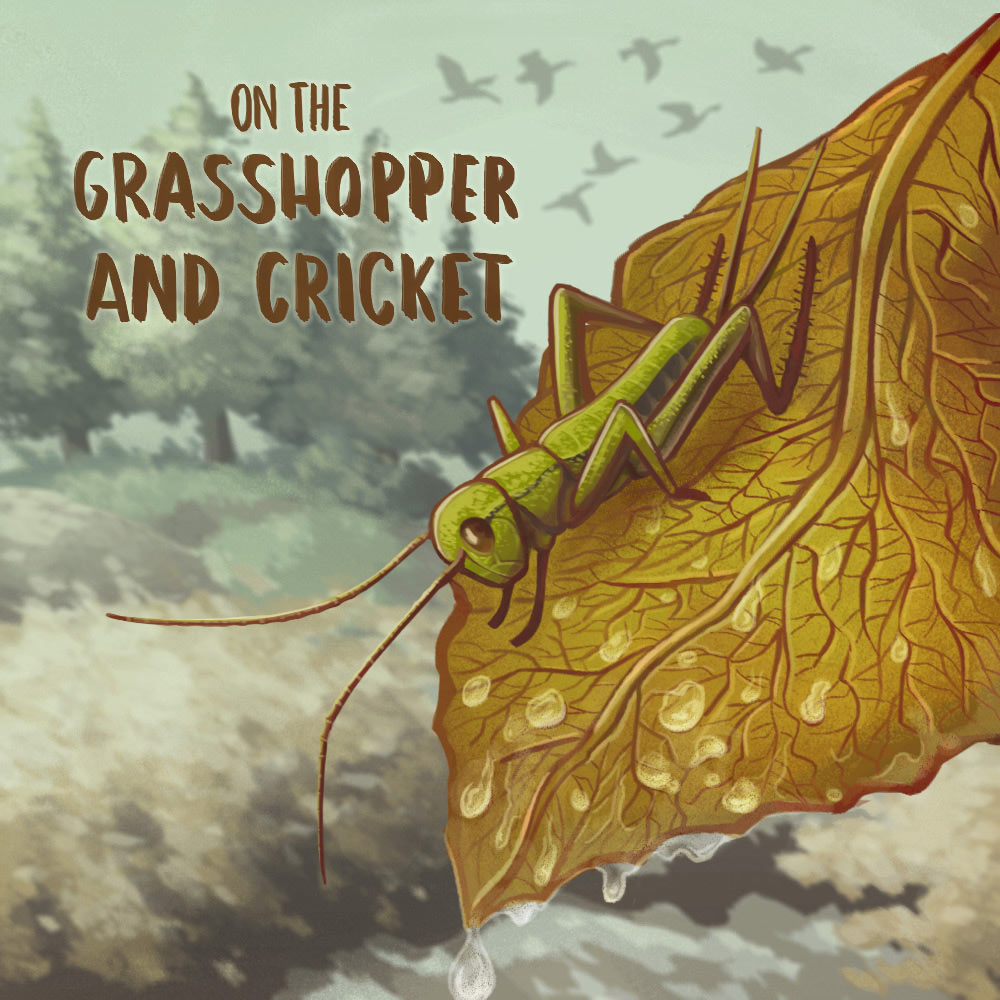 On the grasshopper and cricket